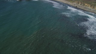 DFKSF16_098 - 5K stock footage aerial video of tracking seagulls flying near the coast, Big Sur, California
