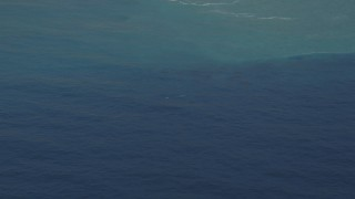 DFKSF16_141 - 5K stock footage aerial video of flying by a whale surfacing in the Pacific Ocean, California