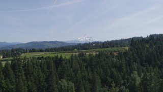 DX0001_000162 - 5.7K stock footage aerial video of flying over trees toward Mount Hood, and reveal Phelps Creek Vineyards in Hood River, Oregon