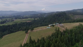 DX0001_000332 - 5.7K stock footage aerial video orbiting a winery revealing Mt Hood, Hood River, Oregon