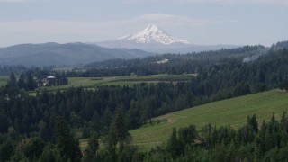 DX0001_000348 - 5.7K stock footage aerial video approaching grapevines with Mt Hood in the distance, Hood River, Oregon