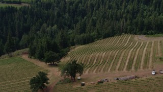 DX0001_000381 - 5.7K stock footage aerial video of circling grapevines at Phelps Creek Vineyards in Hood River, Oregon