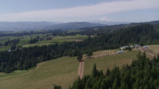 DX0001_000419 - 5.7K stock footage aerial video of flying over grapevines at Phelps Creek Vineyards with a view of Mount Hood, Hood River, Oregon