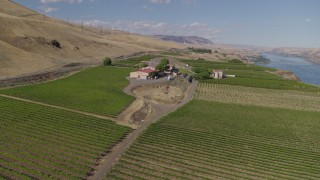 DX0001_000433 - 5.7K stock footage aerial video of orbiting the Maryhill Winery and vineyards in Goldendale, Washington