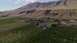 DX0001_000435 - 5.7K stock footage aerial video of an orbit of the Maryhill Winery and vineyards beside the Columbia River in Goldendale, Washington