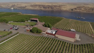 DX0001_000439 - 5.7K stock footage aerial video circling the Maryhill Winery and vineyards beside the Columbia River in Goldendale, Washington