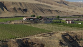 DX0001_000462 - 5.7K stock footage aerial video of slowly flying over grapevines toward the Maryhill Winery in Goldendale, Washington