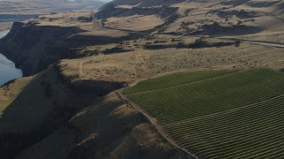 DX0001_000499 - 5.7K stock footage aerial video fly over vineyard toward Lewis and Clark Highway in Goldendale, Washington