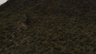 DX0002_145_005 - 5.7K stock footage aerial video approach a small peak with cactus plants in Tucson, Arizona