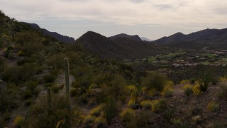 DX0002_145_006 - 5.7K stock footage aerial video fly over a small peak with cactus plants, reveal homes and golf course in Tucson, Arizona