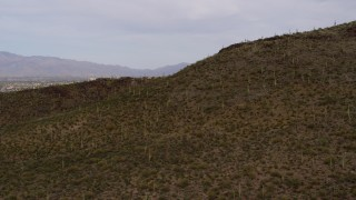 DX0002_145_013 - 5.7K stock footage aerial video reverse view of cactus and vegetation on Sentinel Peak in Tucson, Arizona