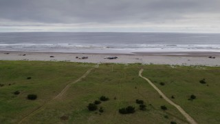 DX0002_148_001 - 4K stock footage aerial video of groups of people enjoying the beach in Long Beach, Washington