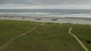 DX0002_148_005 - 4K stock footage aerial video reverse view of people on the beach in Long Beach, Washington