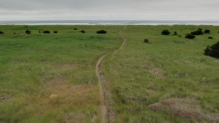 DX0002_148_013 - 4K stock footage aerial video of flying low over a path through tall grass in Long Beach, Washington