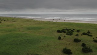 DX0002_148_015 - 4K stock footage aerial video fly over house to approach people on the beach and ocean in Long Beach, Washington
