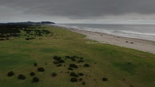 DX0002_148_017 - 4K stock footage aerial video of orbiting people on the beach in Long Beach, Washington
