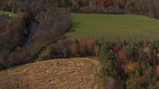 DX0002_216_043 - 5.7K stock footage aerial video of orbit a corn field in Fort Ann, New York, tilt to bird's eye view of trees