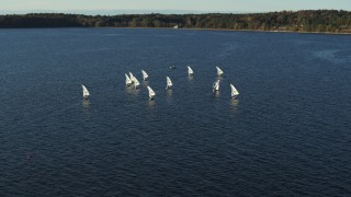 DX0002_224_054 - 5.7K stock footage aerial video circling a group of sailboats on Lake Champlain, Burlington, Vermont