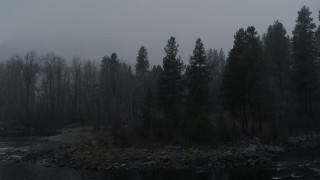 DX0002_227_025 - 5.7K stock footage aerial video stationary view of trees as snow falls, Leavenworth, Washington