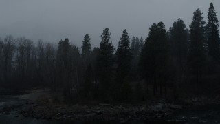 DX0002_227_026 - 5.7K stock footage aerial video stationary view of trees during light snowfall, Leavenworth, Washington