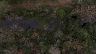 DX0003_234_043 - 5.7K stock footage aerial video orbiting above a narrow river in a forest, Orlando, Florida