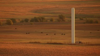 HDA12_058 - 1080 stock footage aerial video of a tall silo on farmland near cattle at sunrise in Oklahoma