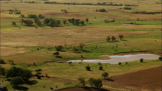 HDA12_099 - 1080 stock footage aerial video of cattle grazing near a watering hole in Temple, Oklahoma