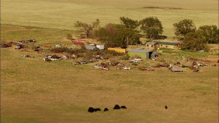 HDA12_114 - 1080 stock footage aerial video fly over fields to approach grazing cattle and junkyard by rural home in Oklahoma