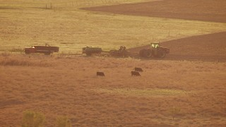 HDA12_138 - 1080 stock footage aerial video of cows and a tractor in a field at sunset in Oklahoma