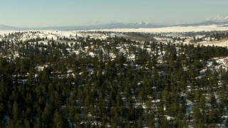 HDA13_318 - HD stock footage aerial video fly over a mountain ridge with evergreen trees in Park County, Colorado