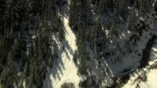 HDA13_354_01 - HD stock footage aerial video tilt from road through trees to reveal river and Rocky Mountains, Colorado