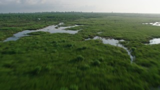 PVED01_073 - 4K stock footage aerial video fly low over marshland and bayou to reveal surge barrier at sunrise in St. Bernard Parish, Louisiana