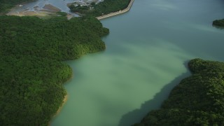 SS01_0058 - 5K stock footage aerial video fly over forest and Tai Tam Reservoir to reveal dam on Hong Kong Island, China