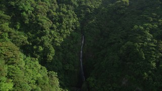SS01_0109 - 5K stock footage aerial video of waterfall and dense forest in the mountains of Hong Kong Island, China