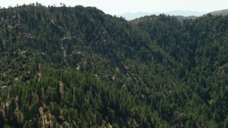 TS01_031 - 1080 stock footage aerial video of a mountain with evergreen trees, Los Padres National Forest, California