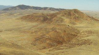 TS01_048 - 1080 stock footage aerial video of flying over desert hills toward the La Panza Range, California