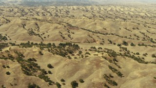 TS01_064 - 1080 aerial stock footage video of flying over rolling hills, Paso Robles, California