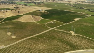 TS01_080 - 1080 stock footage aerial video of fly over vineyards, pan across fields in Paso Robles, California