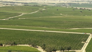TS01_084 - 1080 stock footage aerial video of car on country road through vineyards in Paso Robles, California