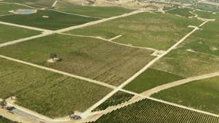 TS01_085 - 1080 stock footage aerial video of flying over vineyards and fields; Paso Robles, California