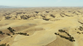 TS01_088 - 1080 stock footage aerial video of flying over rolling hills, Paso Robles, California