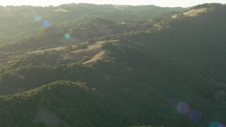 TS01_180 - 1080 stock footage aerial video of approaching trees and the Sonoma Mountains, California