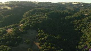 TS01_183 - 1080 stock footage aerial video of flying over forest in the Sonoma Mountains, California