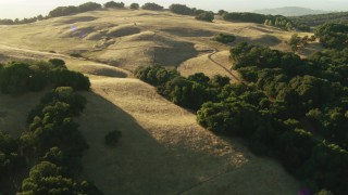 TS01_185 - 1080 stock footage aerial video of flying over trees and roads in Sonoma Mountains, California