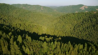TS01_212 - 1080 stock footage aerial video of flying over forest and mountains in Sonoma County, California