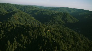 TS01_216 - 1080 stock footage aerial video flyby mountains and evergreen forest in Sonoma County, California