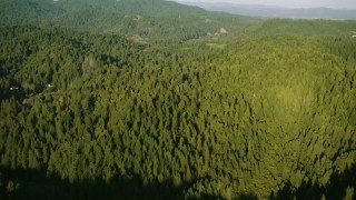TS01_217 - 1080 stock footage aerial video tilt from bird's eye of forest to approach mountains in Sonoma County, California