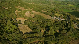 TS01_222 - 1080 aerial stock footage video of flying by rural homes and vineyards in Forestville, California