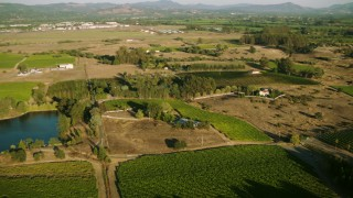 TS01_223 - 1080 stock footage aerial video of farm fields and vineyards in Windsor, California