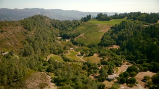 TS01_232 - 1080 stock footage aerial video of flying over rural homes to approach vineyard in Santa Rosa, California